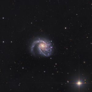 M99 Galaxy in Coma Berenices
