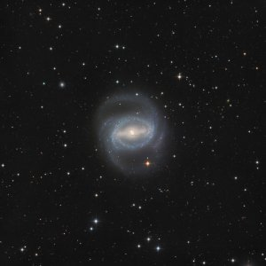 NGC1433 Galaxy in Horologium