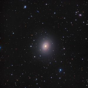 NGC 2775 Galaxy in Cancer