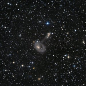 ESO138-IG29  RINGGALAXIE IN ARA
