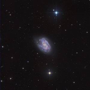 NGC157 Galaxy in Cetus
